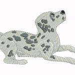 A41 Haft Pies Dalmatyńczyk