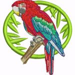 A42 Haft Papuga Ara