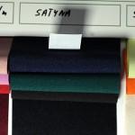 L13_satyna